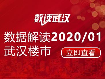 数据解读2020/01武汉楼市